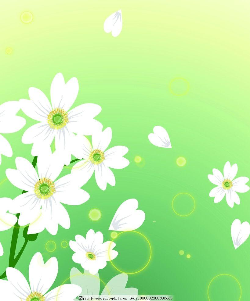 百合 百合花 花边花纹 底纹边框 设计 72dpi jpg