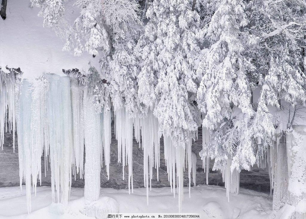 冬天的雪景 寒冷 冰冻三尺 冰棱 被冰包裹的树 冰流 壁纸 摄影图片