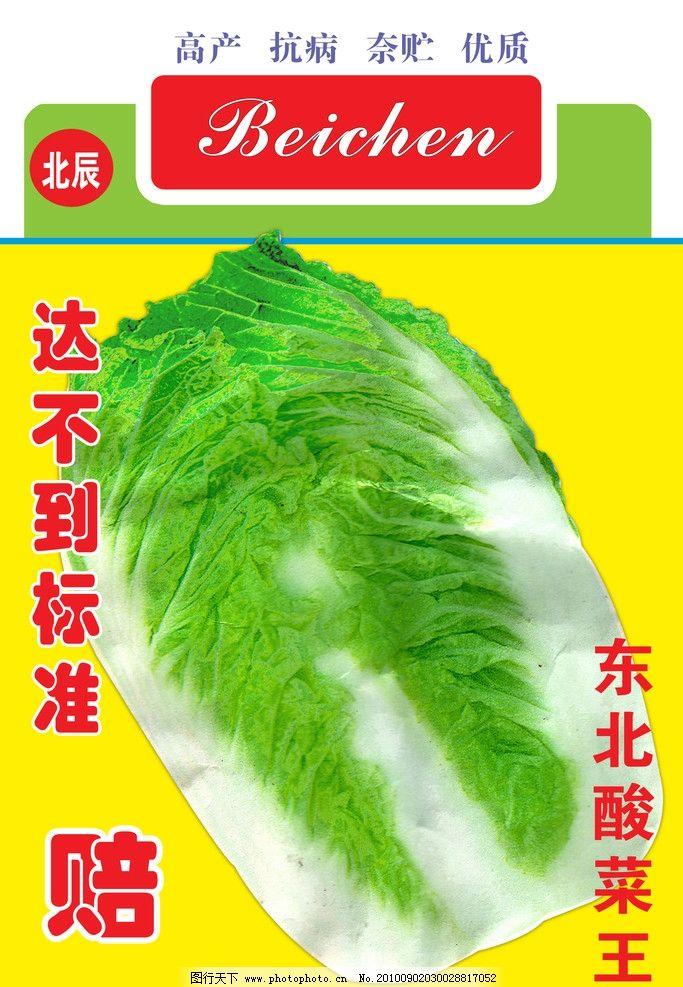 白菜种子 北辰白菜 海报设计 广告设计模板 源文件 70dpi psd