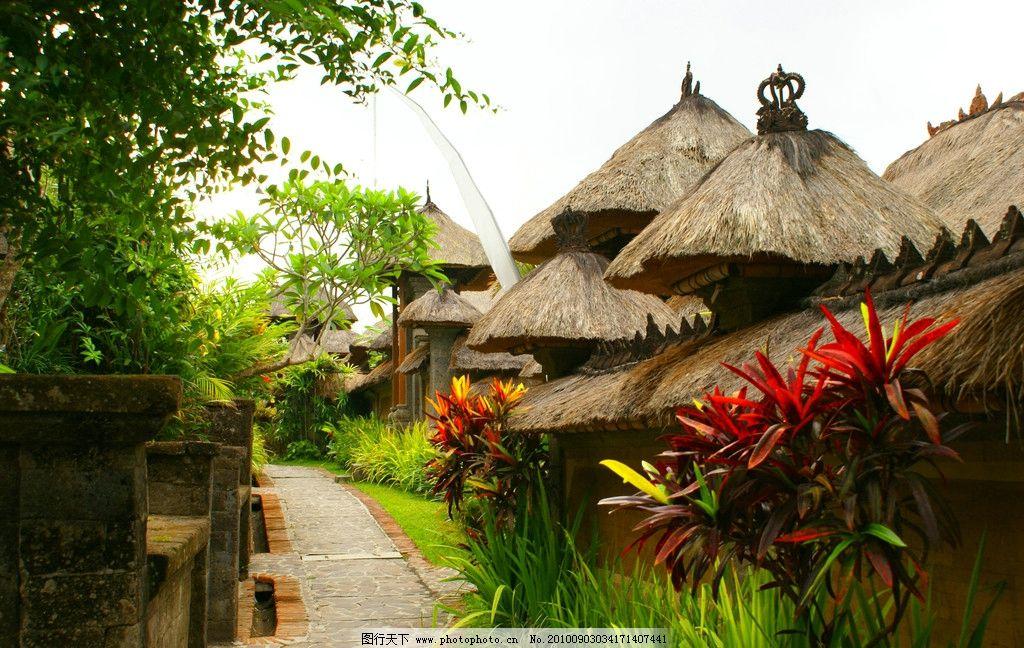东南亚 印尼 巴厘岛 热带植物 蓝天 白云 梯田 风景 茅草房屋 小路