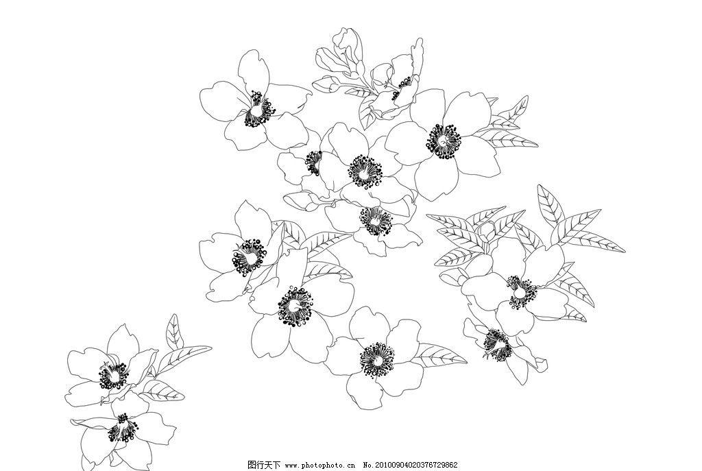 黑白手绘花边图片_手绘花边框图