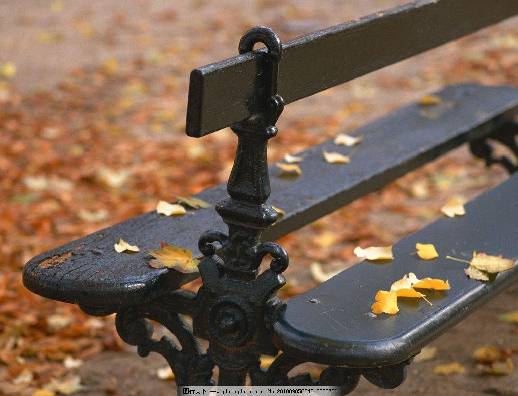 世界 旅游 风景 名胜 建筑 风光 古迹 西欧 欧美 椅子 枫叶 落叶 秋天