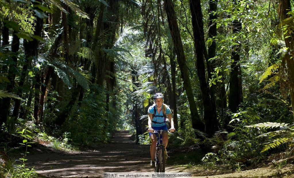 在森林中骑车的运动员图片