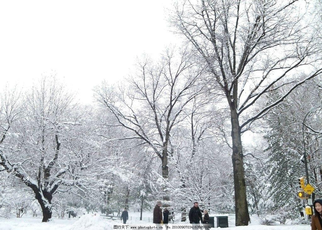 公园雪景 纽约 冬天 积雪 路人 树 白色 中央公园 纽约风景