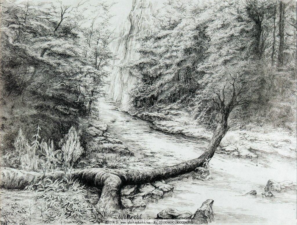 张家界金鞭溪 钢笔画 线条 风景画 黑白画 线稿 线描 中国画 树 树木