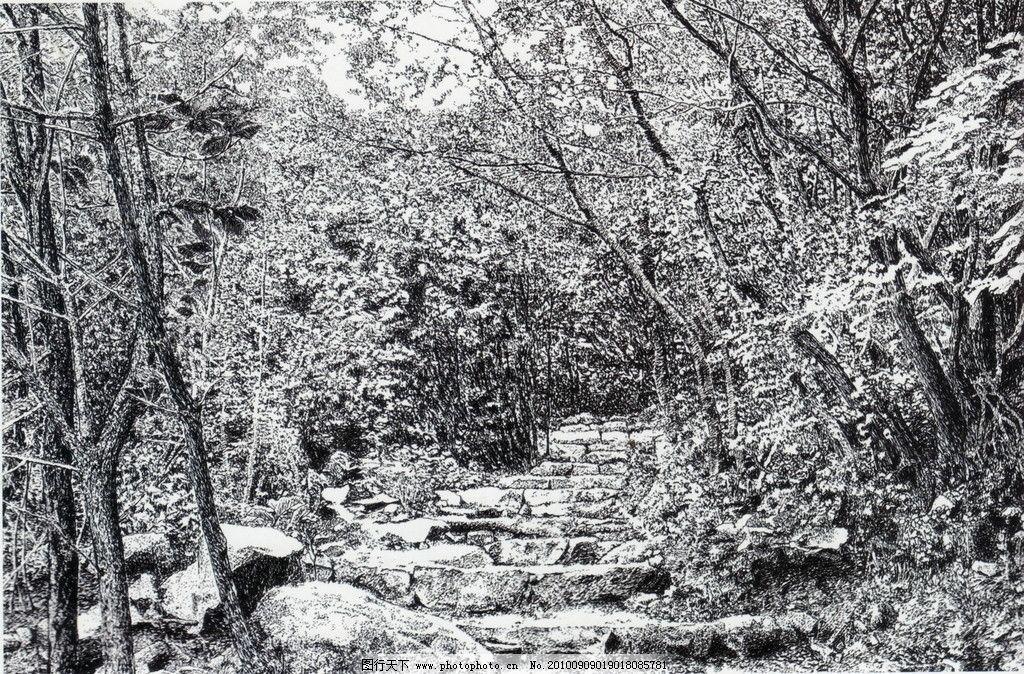 拾级而上 钢笔画 线条 风景画 黑白画 线稿 线描 中国画 树 树木 台阶