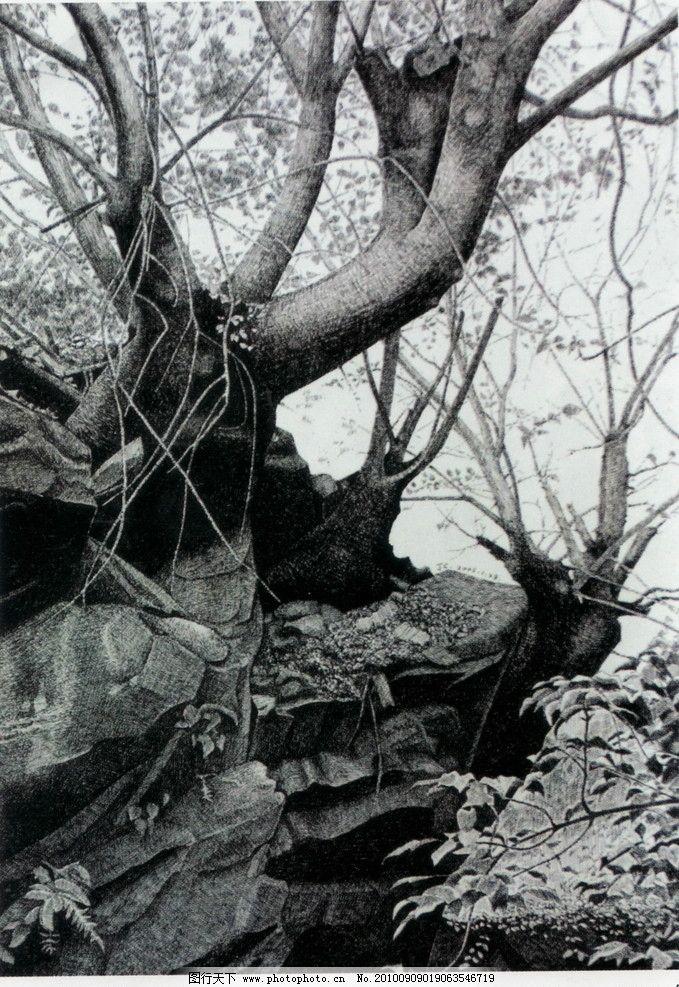 树干 钢笔画 线条 风景画 黑白画 线稿 线描 中国画 树 树木 绘画书法