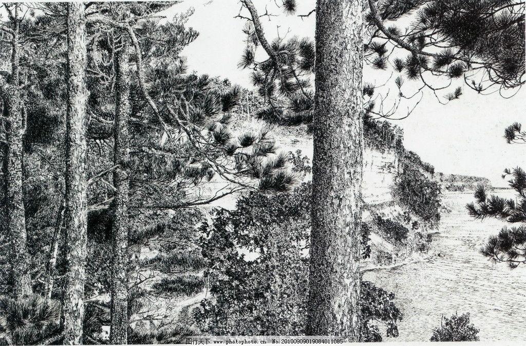 松潮 钢笔画 线条 风景画 黑白画 线稿 线描 中国画 树 树木 松树