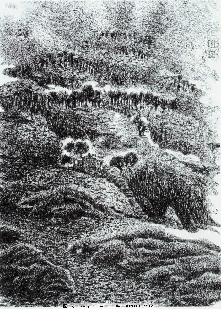秦岭雨后 钢笔画 线条 风景画 黑白画 线稿 线描 中国画 树 树木 山
