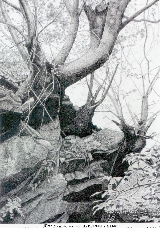 树干 树木 树干设计素材 树干模板下载 树干 钢笔画 线条 风景画 黑白