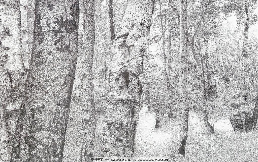 72dpi jpg 风景画 钢笔画 黑白画 绘画书法 森林 设计 树 树木 春发