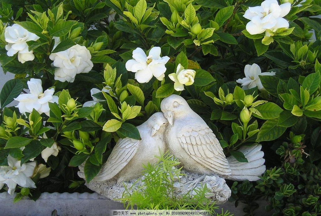相爱的鸽子 爱情 雕塑 鸽子雕塑 依偎的鸽子 白色花朵 花丛中的鸽子