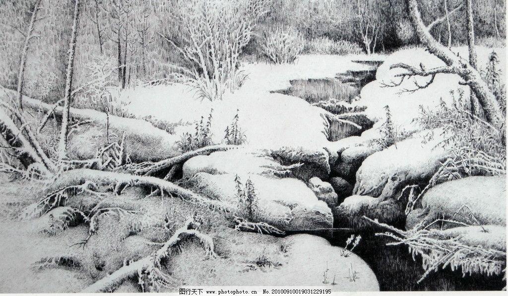 雪地 钢笔画 线条 风景画 黑白画 线稿 线描 中国画 树 树木