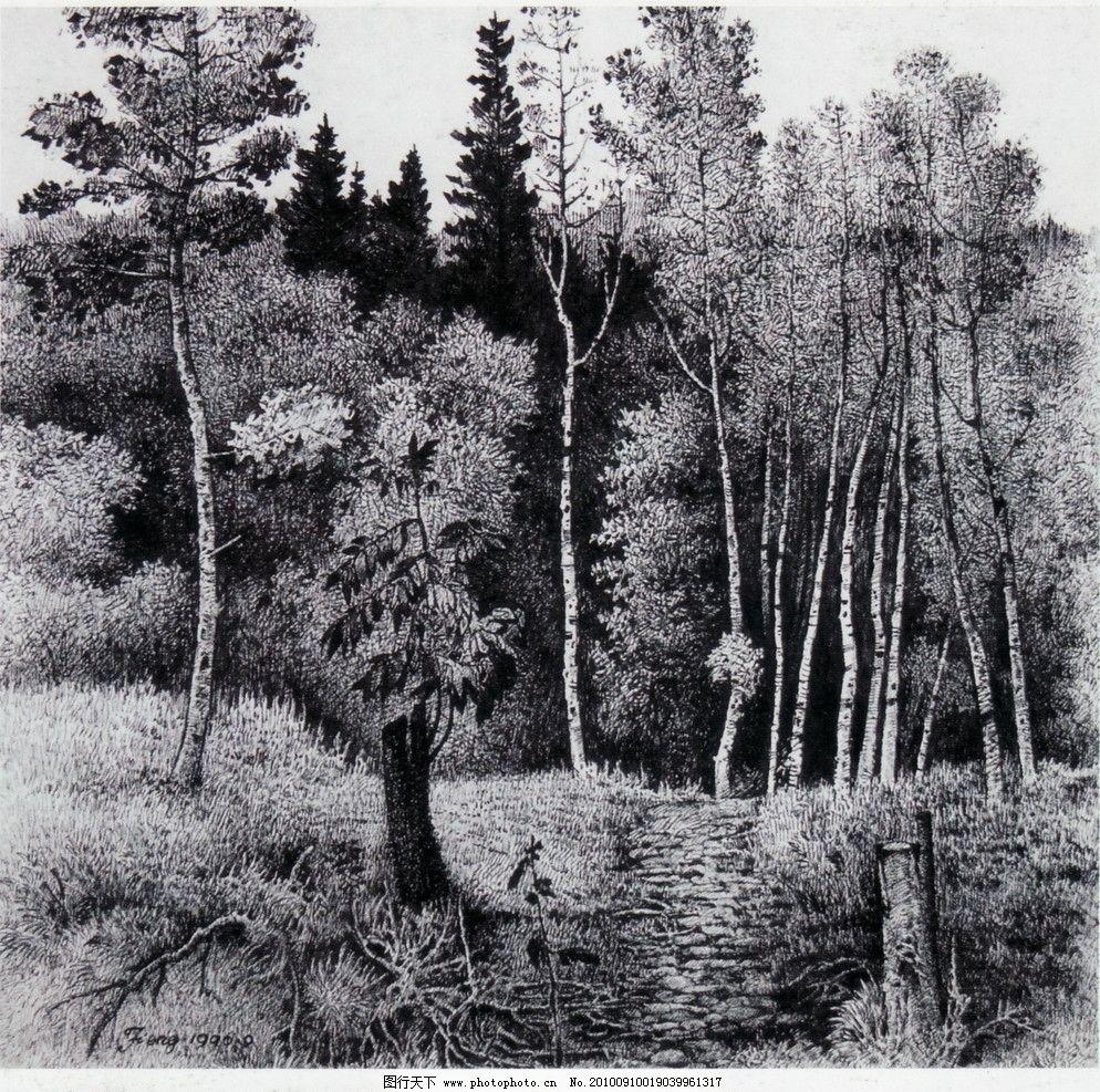 山间小路 钢笔画 线条 风景画 黑白画 线稿 线描 中国画 树 树木 小路