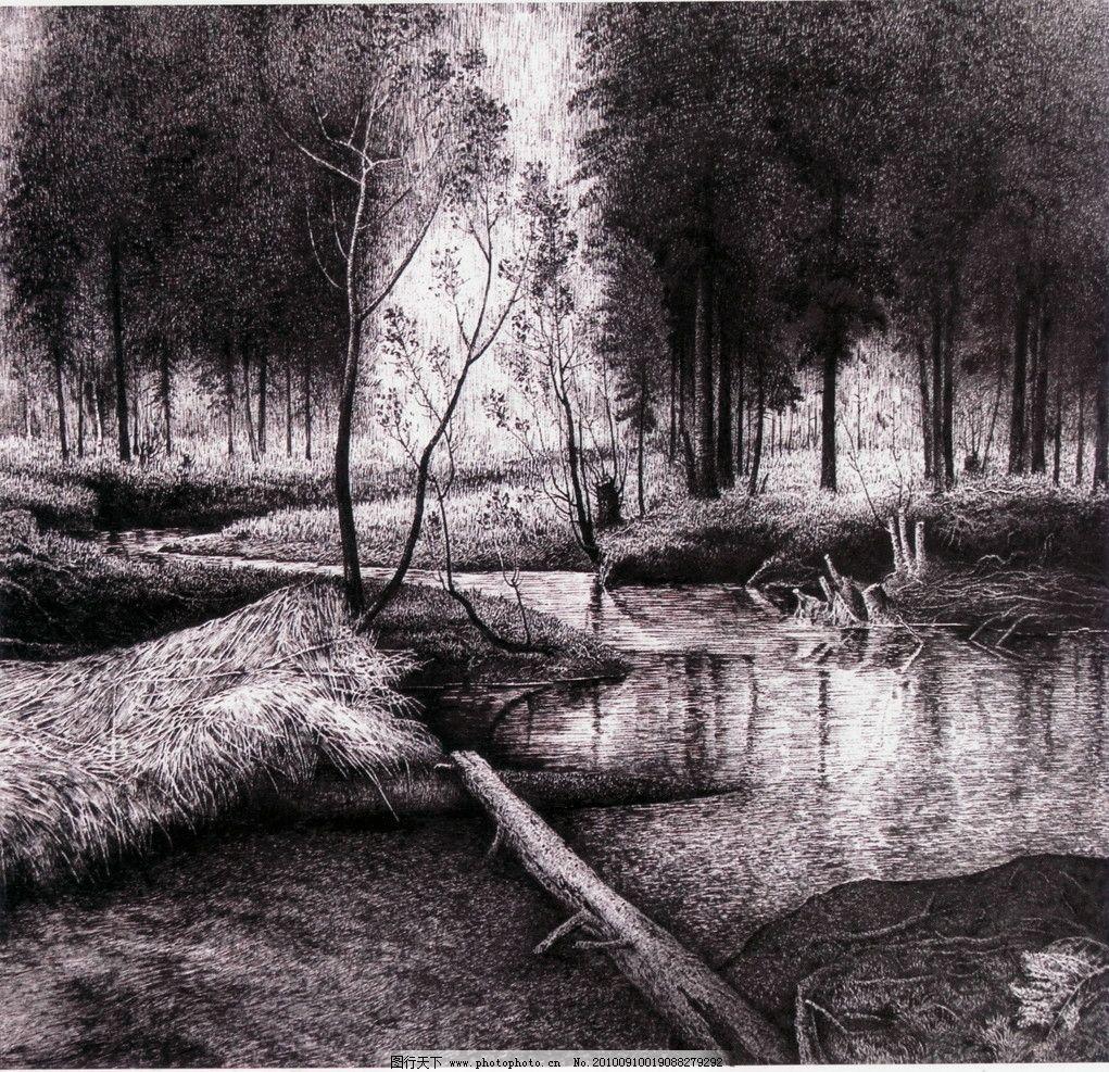 山溪 钢笔画 线条 风景画 黑白画 线稿 线描 中国画 树 树木 溪水
