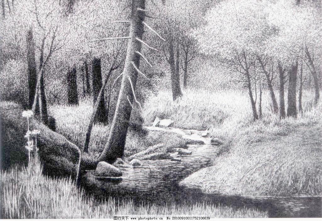 秋韵 钢笔画 线条 风景画 黑白画 线稿 线描 中国画 树 树木 秋天图片