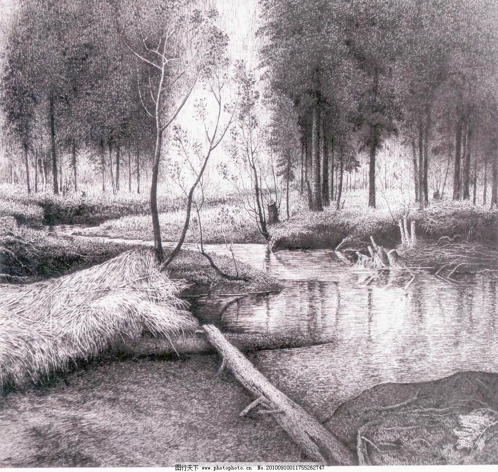 素描树木风景图片