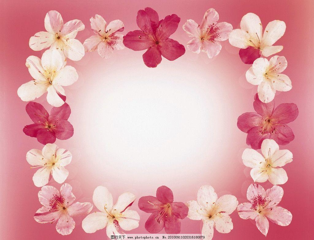 花边 鲜花 边框 底纹 花边花纹 底纹边框 设计 350dpi jpg