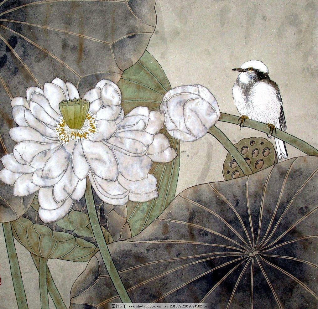 荷花白头鸟 绘画 中国画 工笔重彩画 花卉画 现代国画 荷花 荷叶 花香