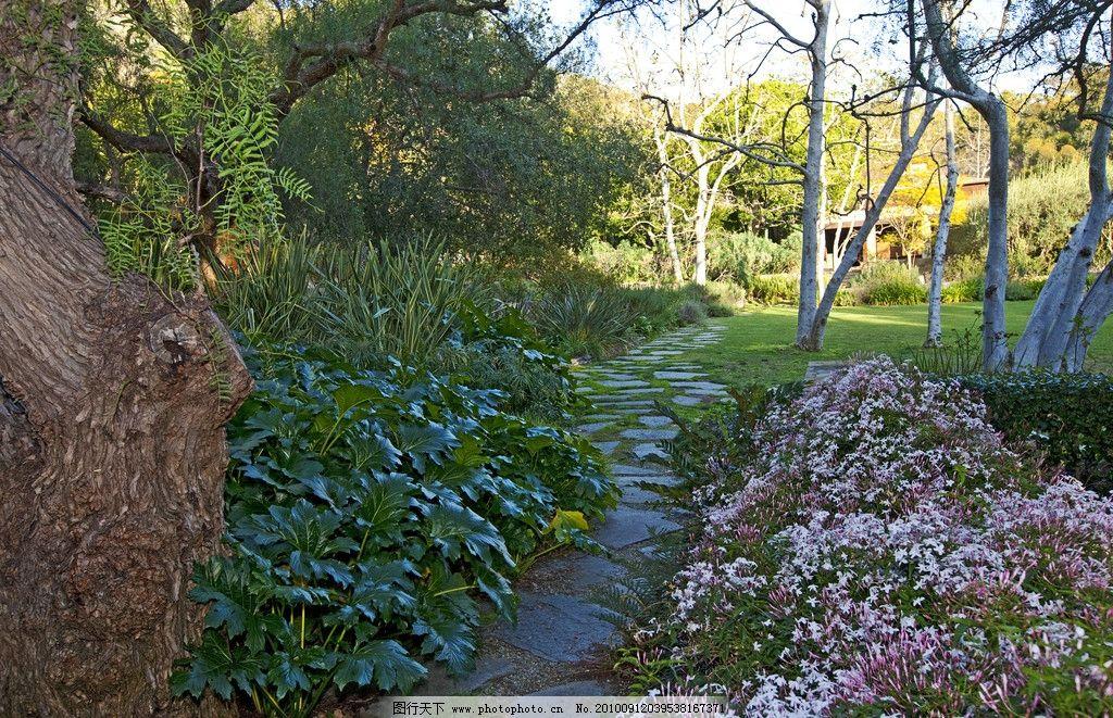 豪华别墅庄园里的花园里小石路图片