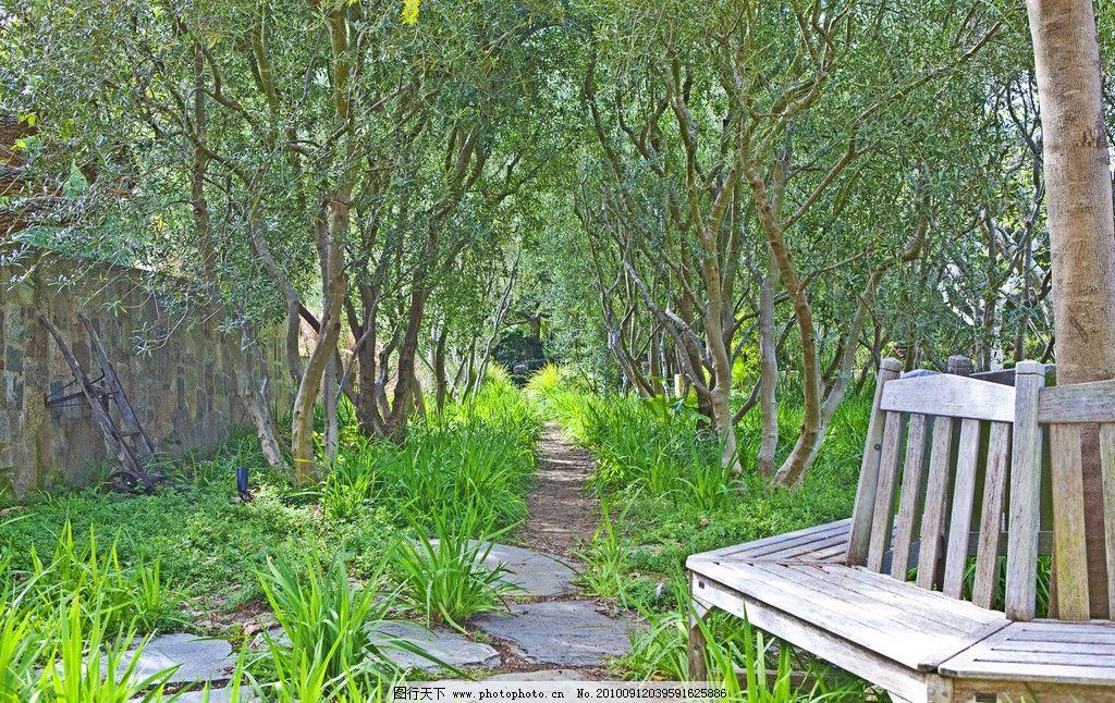 庄园 花园 豪华别墅/豪华别墅庄园里的花园里的木椅图片