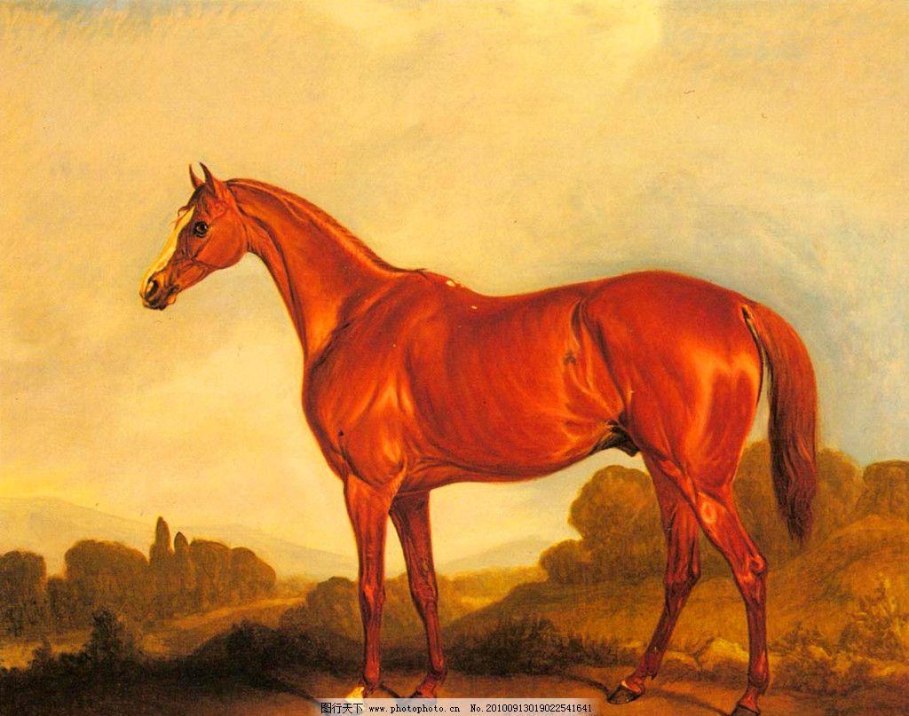 油画 胜利的马儿 装饰画 无框画 手绘 风景画 大师作品 扫描