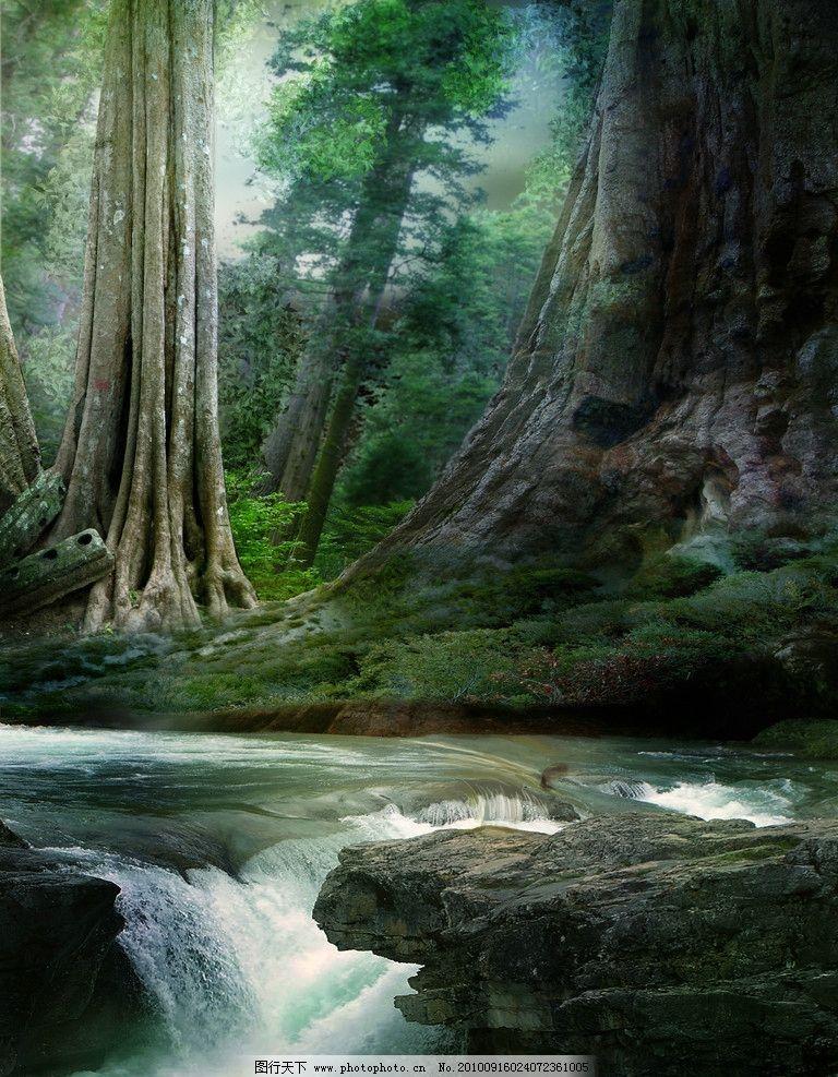 设计图片 美丽景色 森林 流水 溪流 小溪 溪水 河水 大树 树木 风景