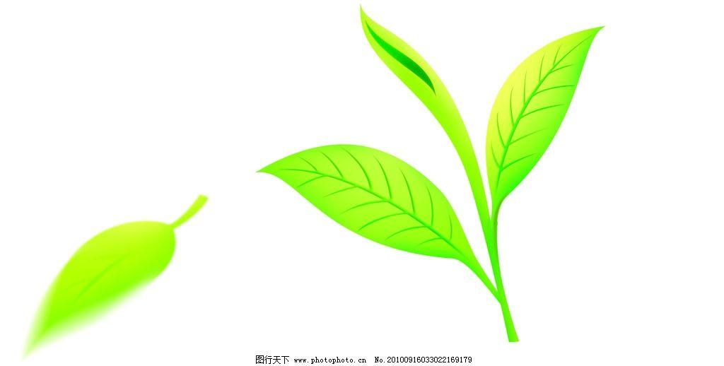 psd手绘鼠绘茶叶绿叶分层素材图片