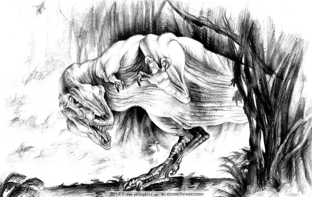 孔龙 手绘 黑白画图片