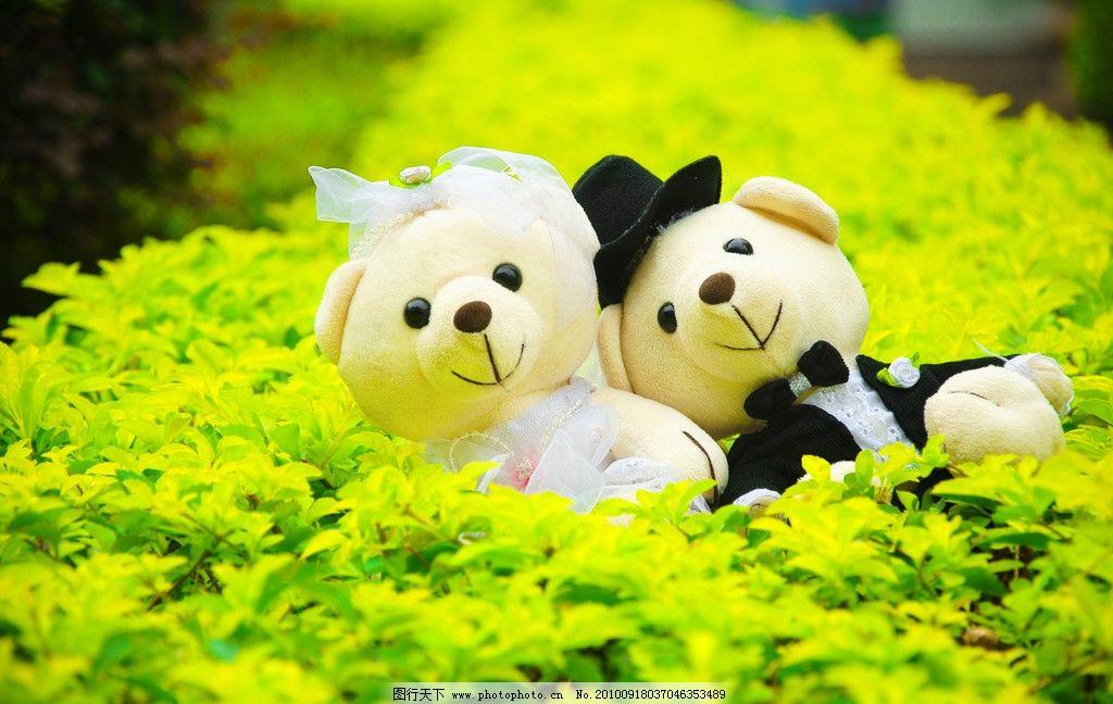 两只小熊 可爱的小熊 布娃娃