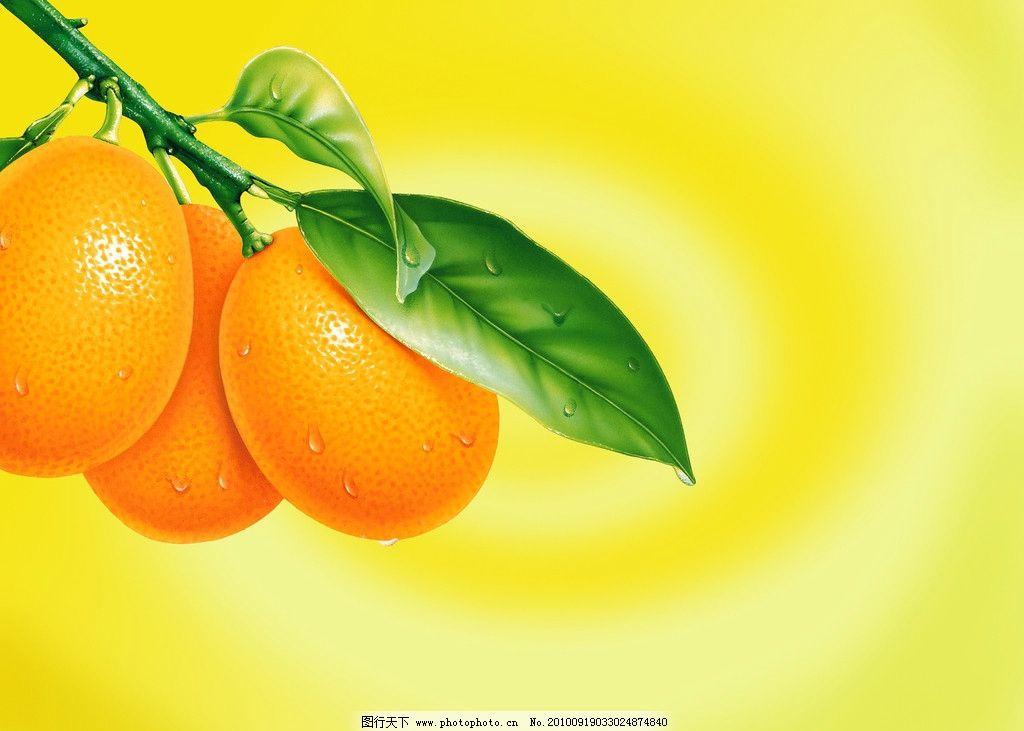 橙子 水果图片