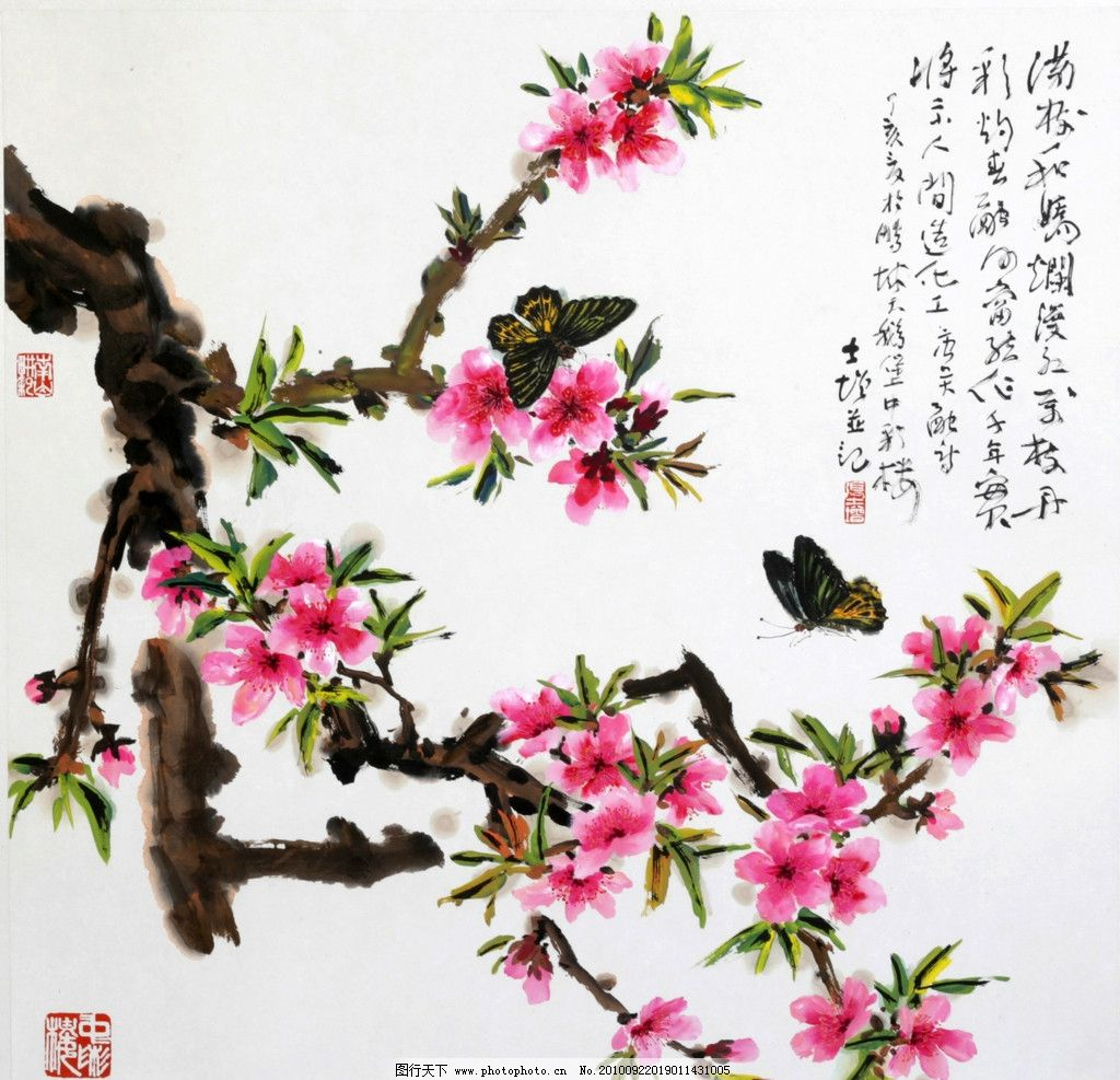 国画 花鸟 水墨画 中国画 彩画 梅花 粉红梅花 绘画书法 文化艺术