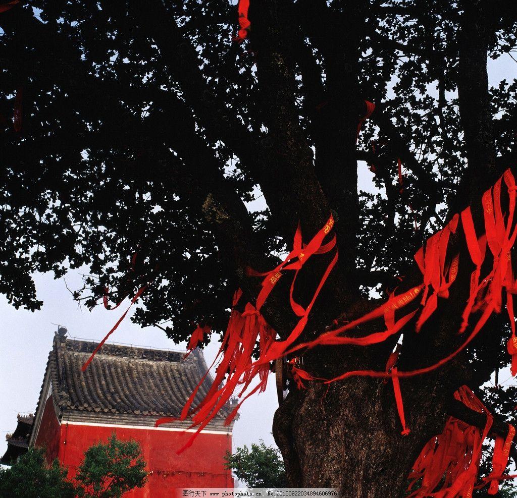 旅游摄影 自然景观 风光 风景 建筑 寺庙 树 古树 大树 飘带 红丝带