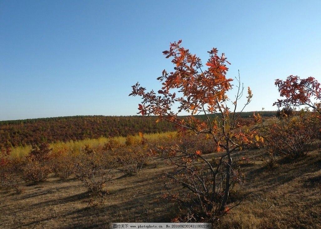 农村的色彩 多彩 秋天 清新 自然景观 自然风景 旅游摄影 摄影