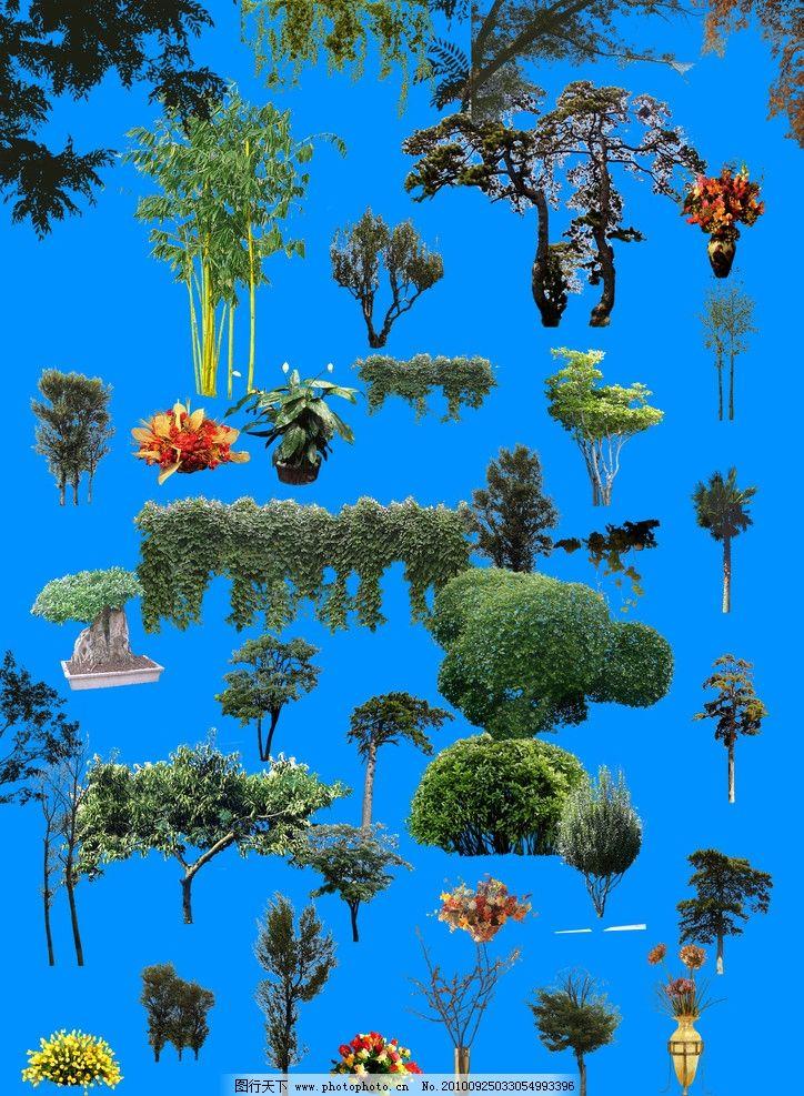 綜合植物ps素材 植物 綠色 地產素材 綜合植物 花草 竹子 綠樹 psd