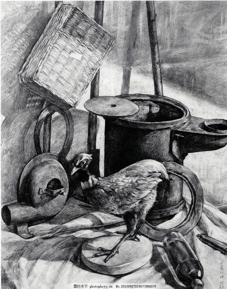 师生作品 高考素描 大学素描 静物素描 椅子 布 标本 动物 动物标本