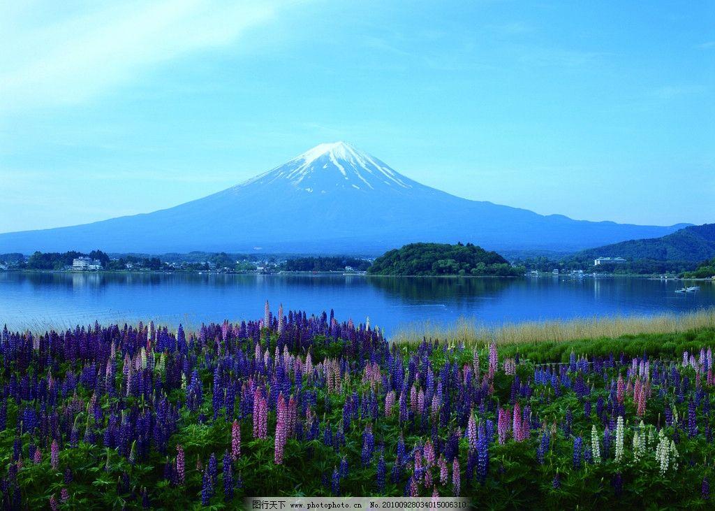 东京横滨富士山 日本 东京 横滨 富士山 风景 国外旅游 旅游摄影 摄影