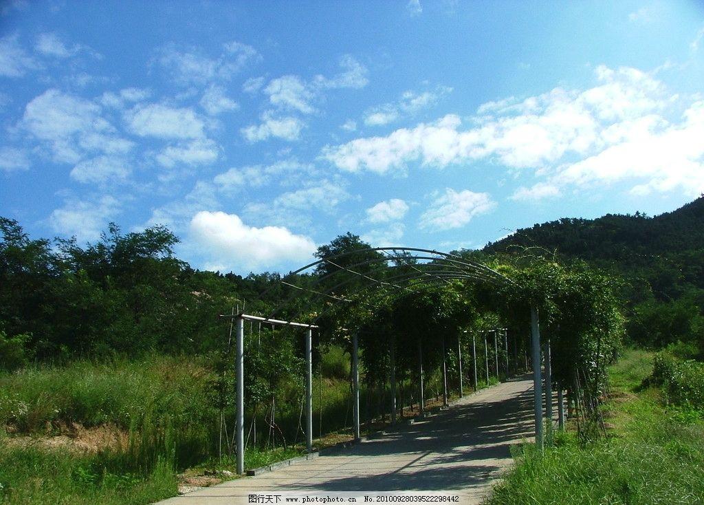 风景区 百果山 百果山风景区 山景 自然 蓝天白云 园林 园林建筑