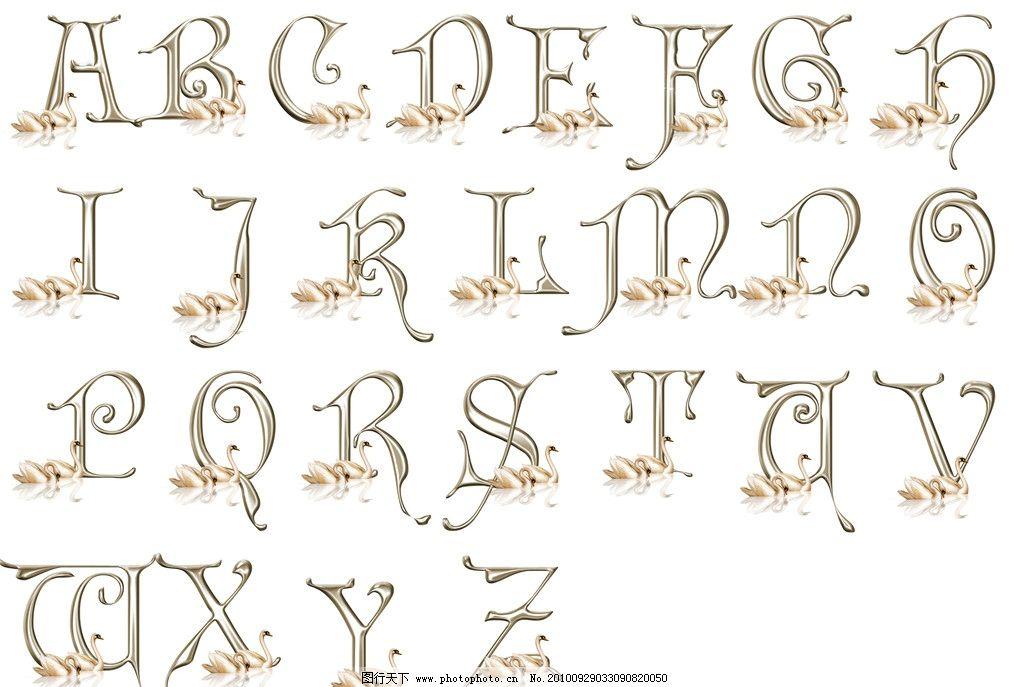 天鹅英文字母图片