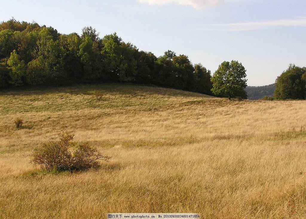 秋季荒野图片